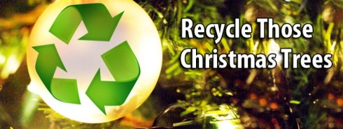 recycle-christmas-tree